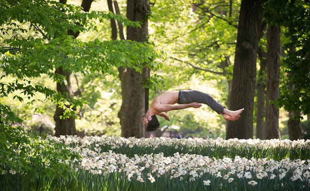 dancers-among-us-chicquero-photography-dance-jason_macdonald.jpeg