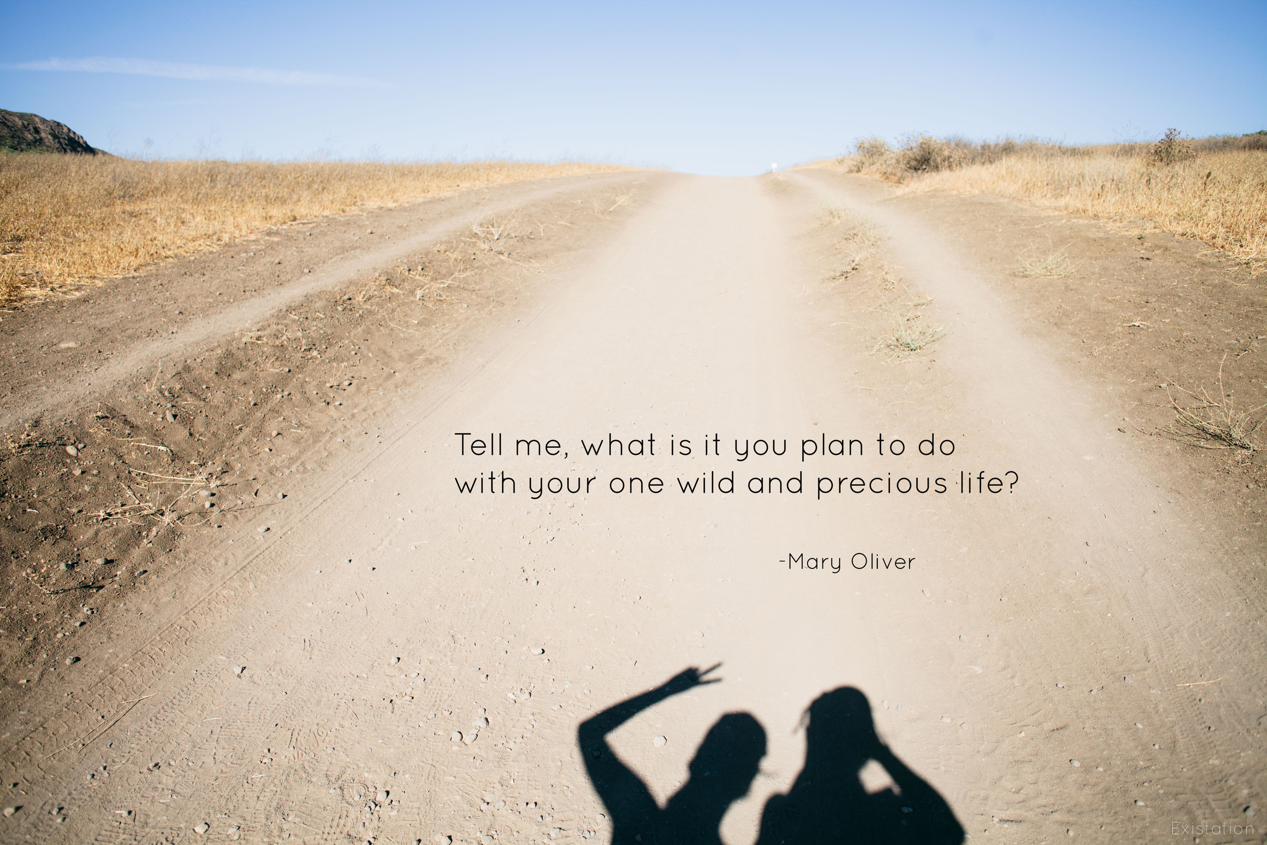 wild precious life mary oliver quote