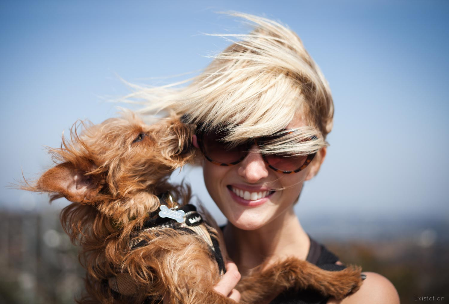 windy+dog+love.jpg