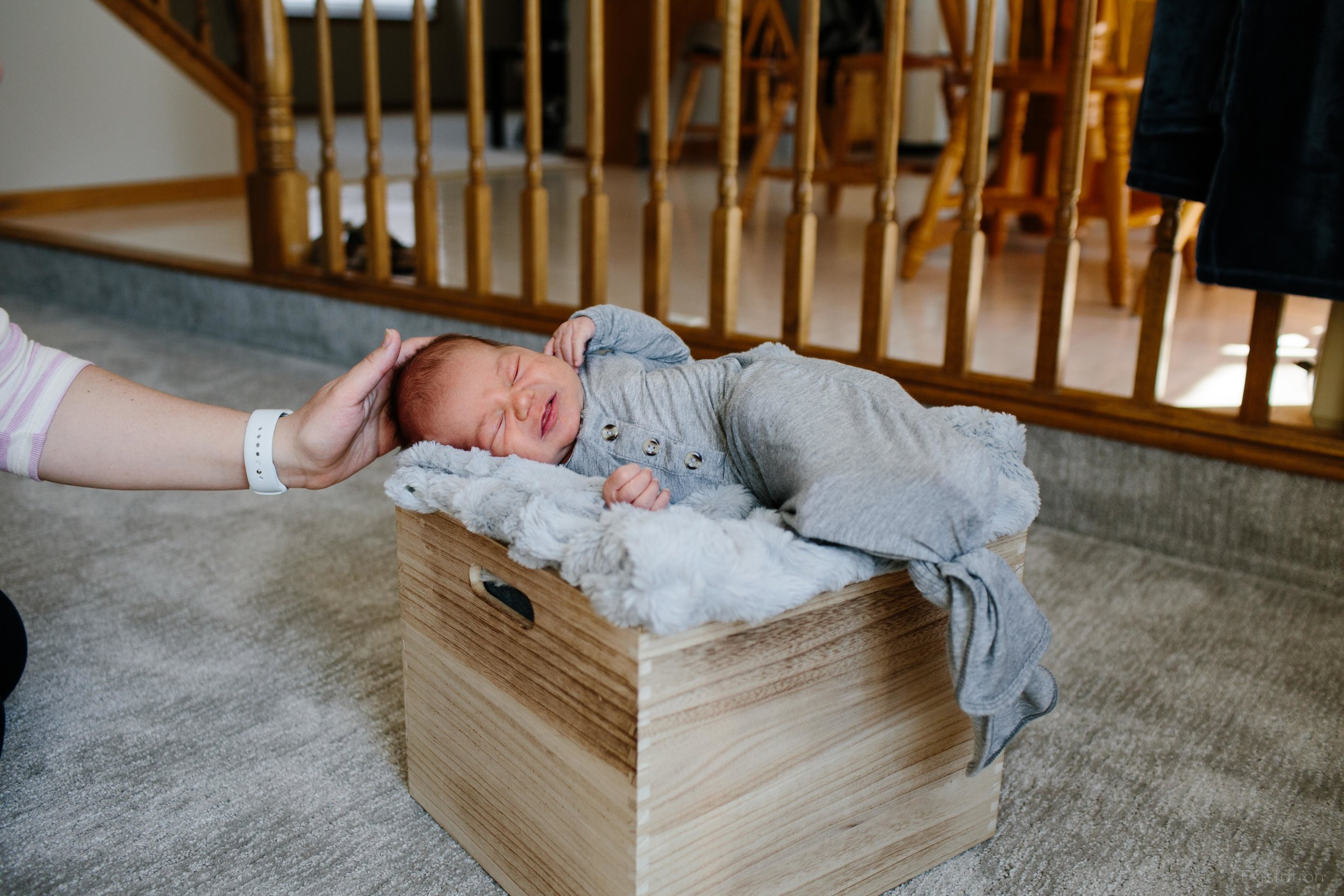 newborn-photos-11.jpg