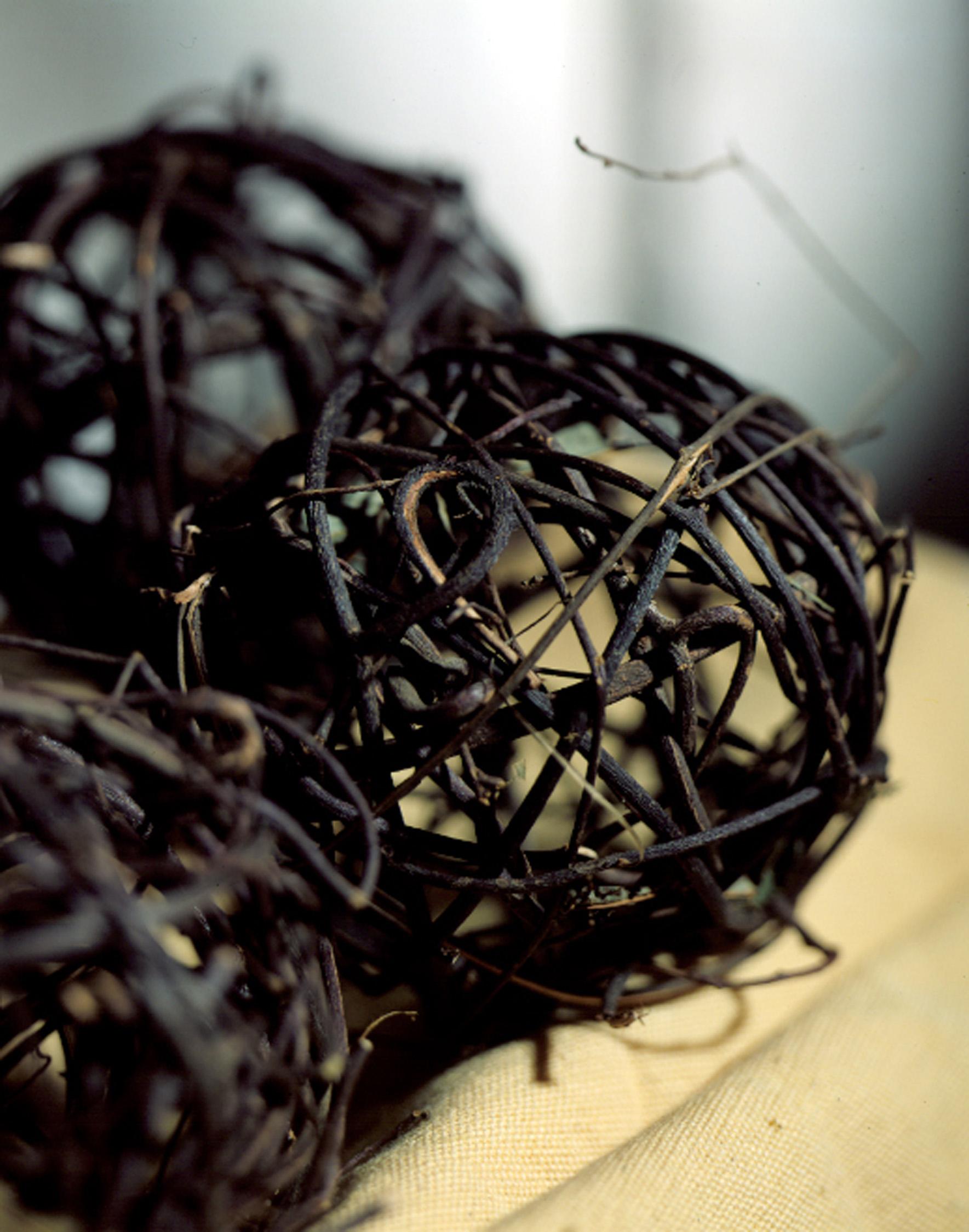 Willow Ballsweb.jpg