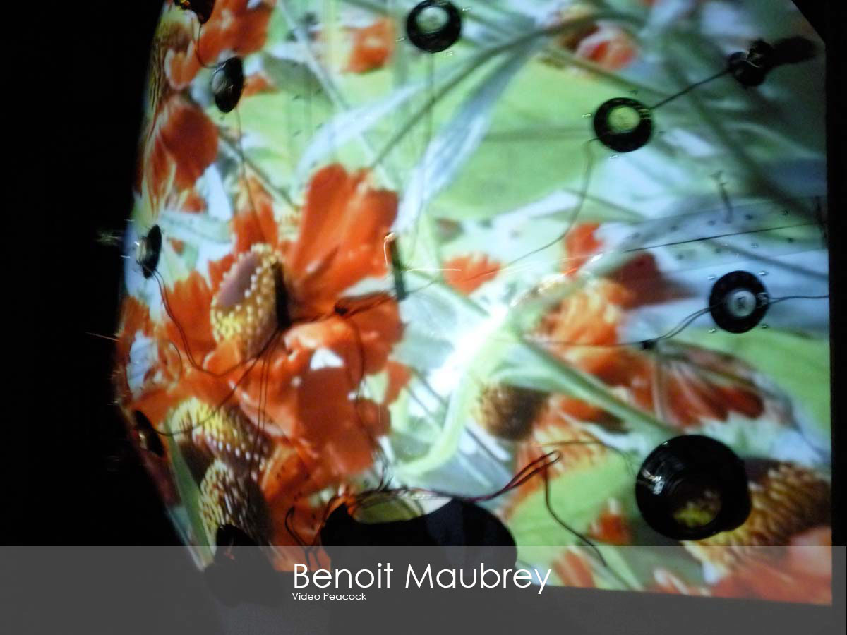 Slider Image- MaubreyPeacock-color-detail2.jpg