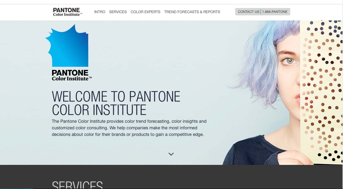 Image of Pantone/Pantone Color Institute
