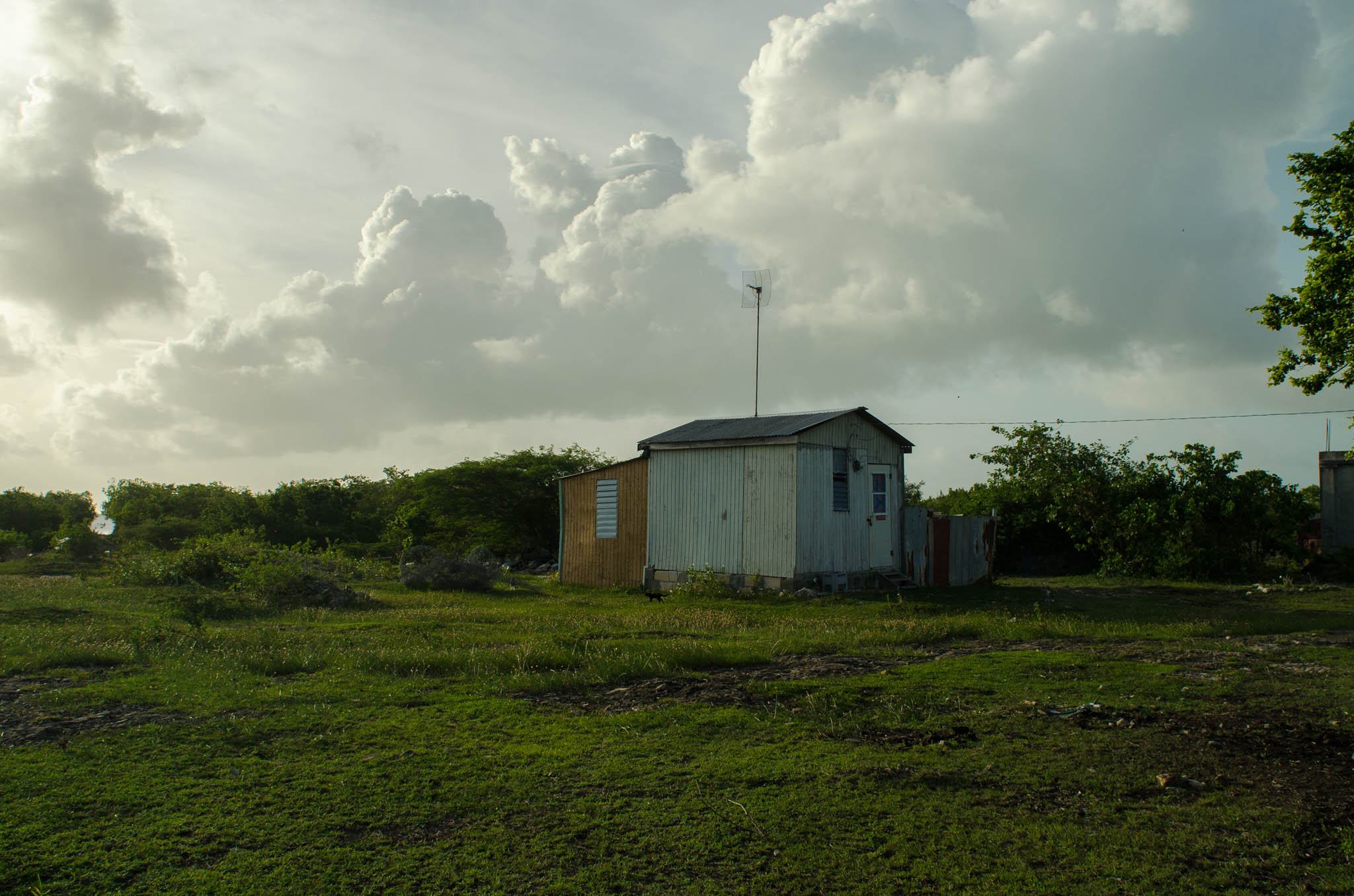 House, Barbuda - Photo, Tom Miller