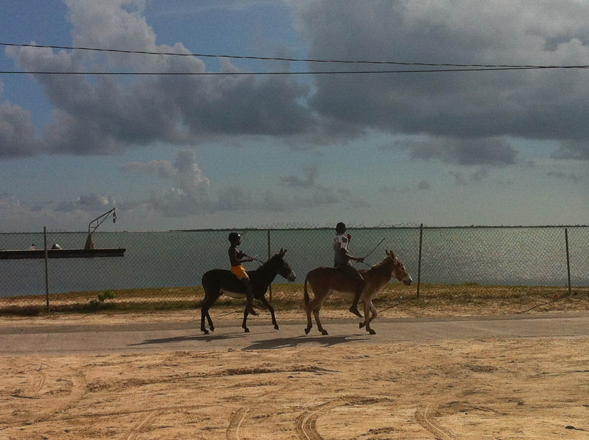 Boys on Donkeys
