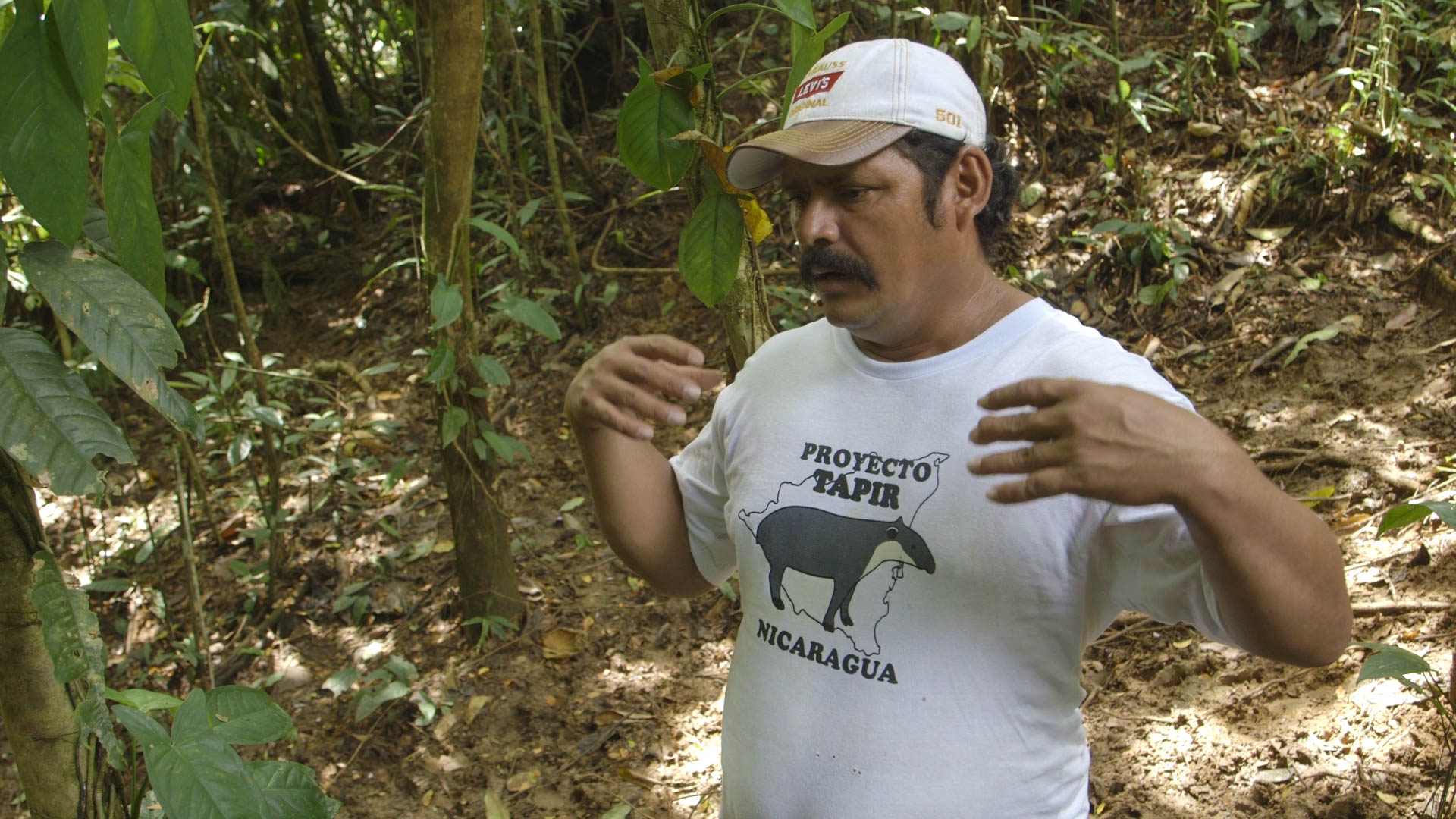 Tito, with his Proyecto Tapir t-shirt - video still, Tom