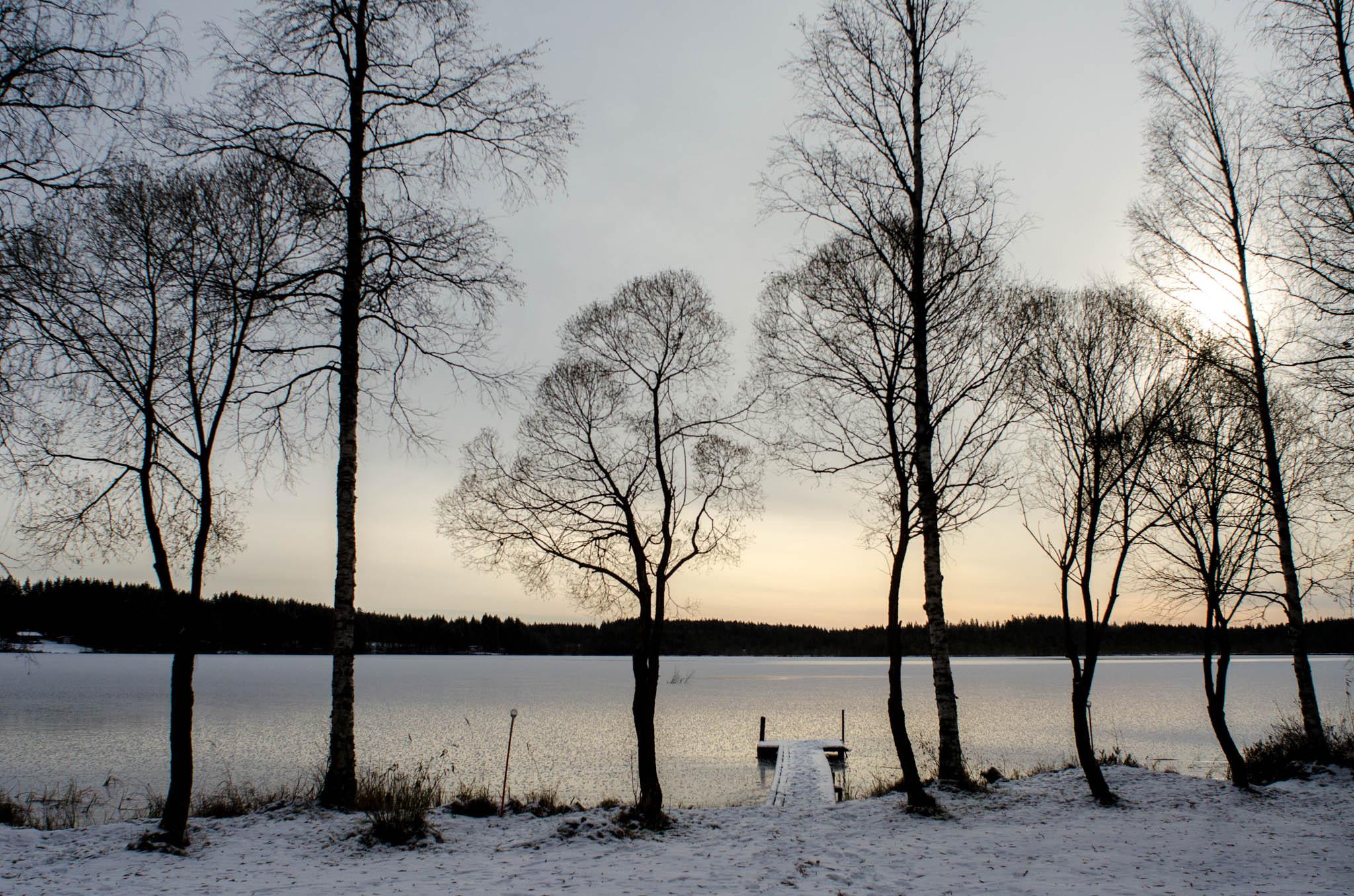 View of the lake Alavi's yard - Still, Tom Miller