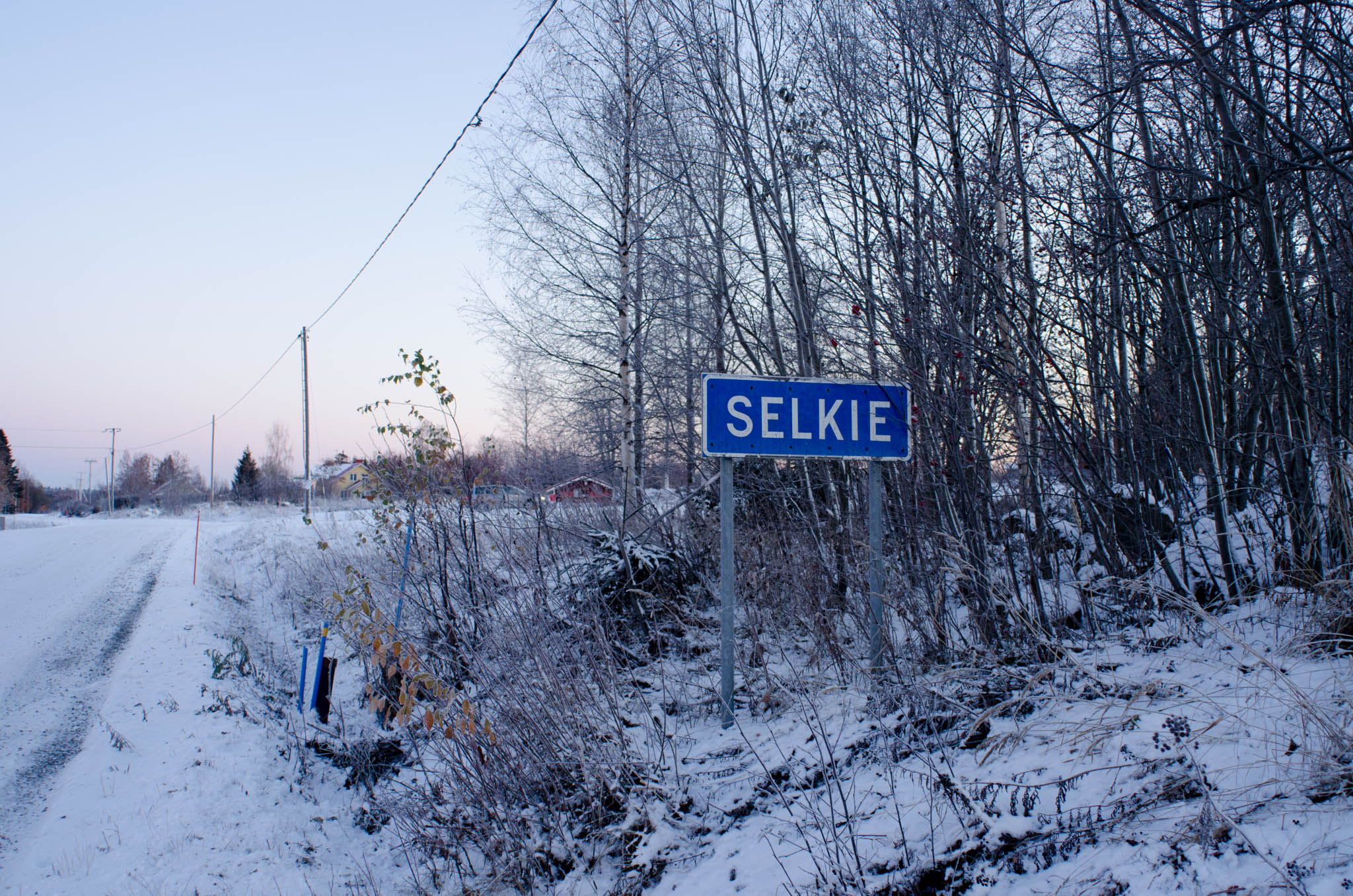 Selkie Sign
