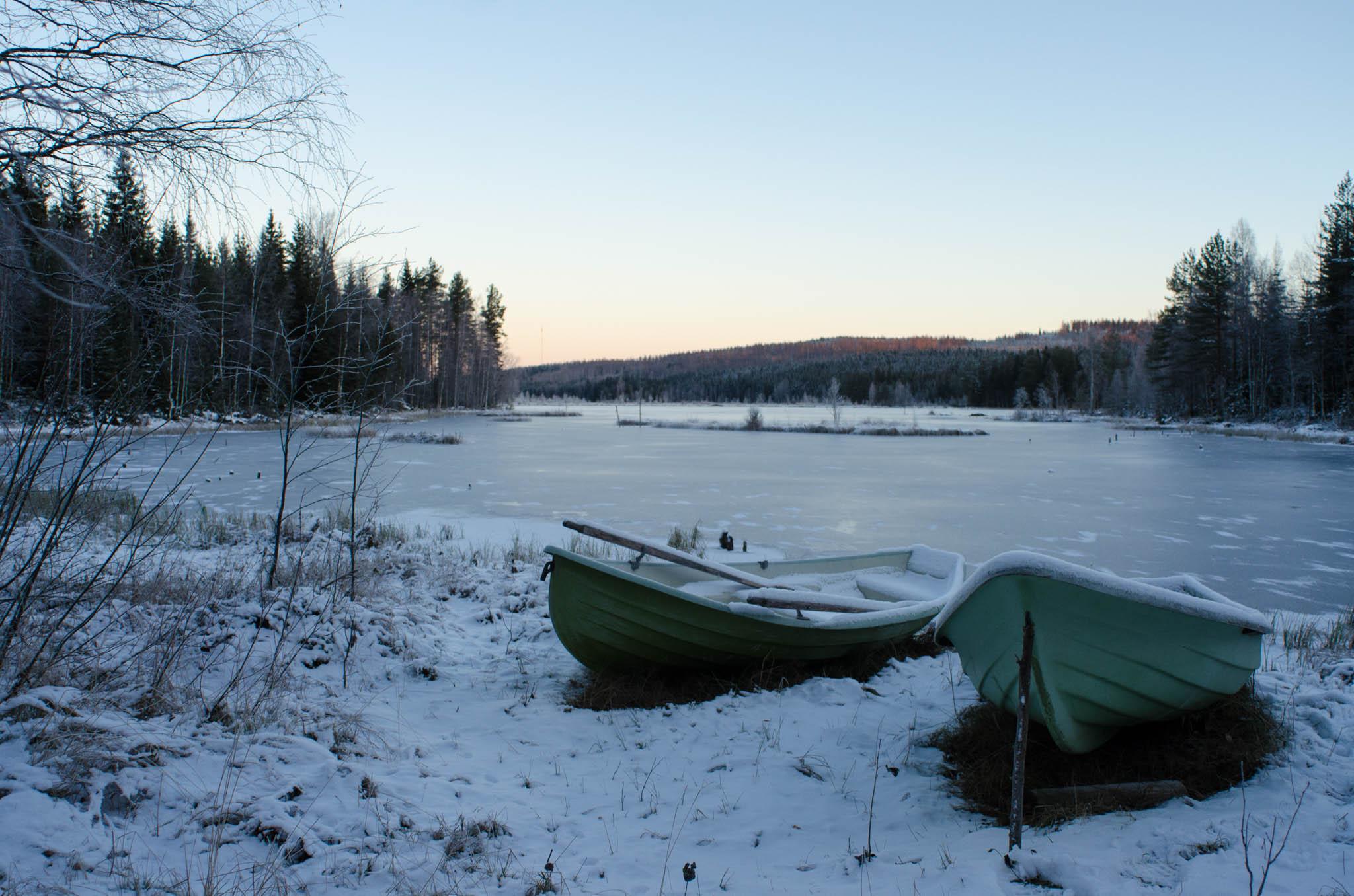 Frozen Pond, Selkie