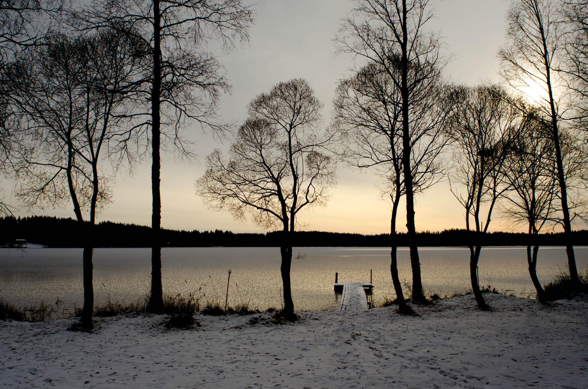 Winter, Alavi