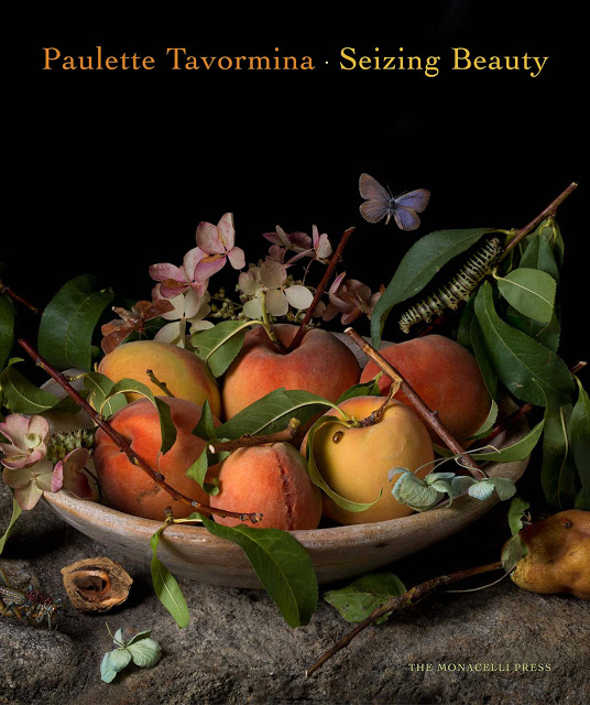 Paulette Tavormina - Seizing Beauty - Doreen Chambers Interior Design Brooklyn