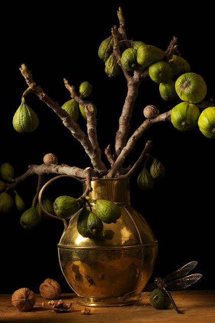 Figs, After G.F. (2009)