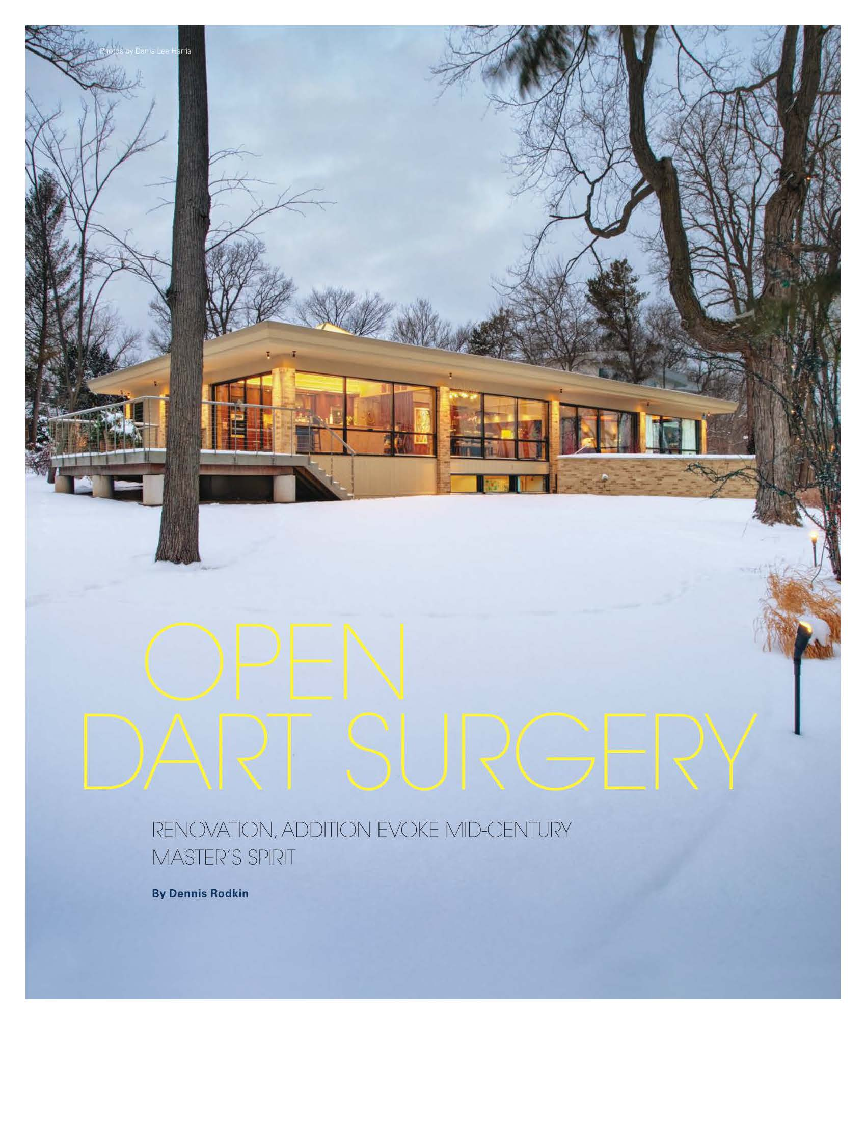 2012 Dart House Chicago Architect_Page_2.jpg