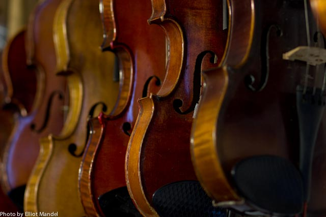 Violins hanging in the Dixon-Stein studio.