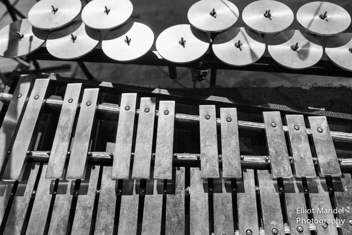 ThirdCoastPerc_11.1.14_by_ElliotMandel-3.jpg