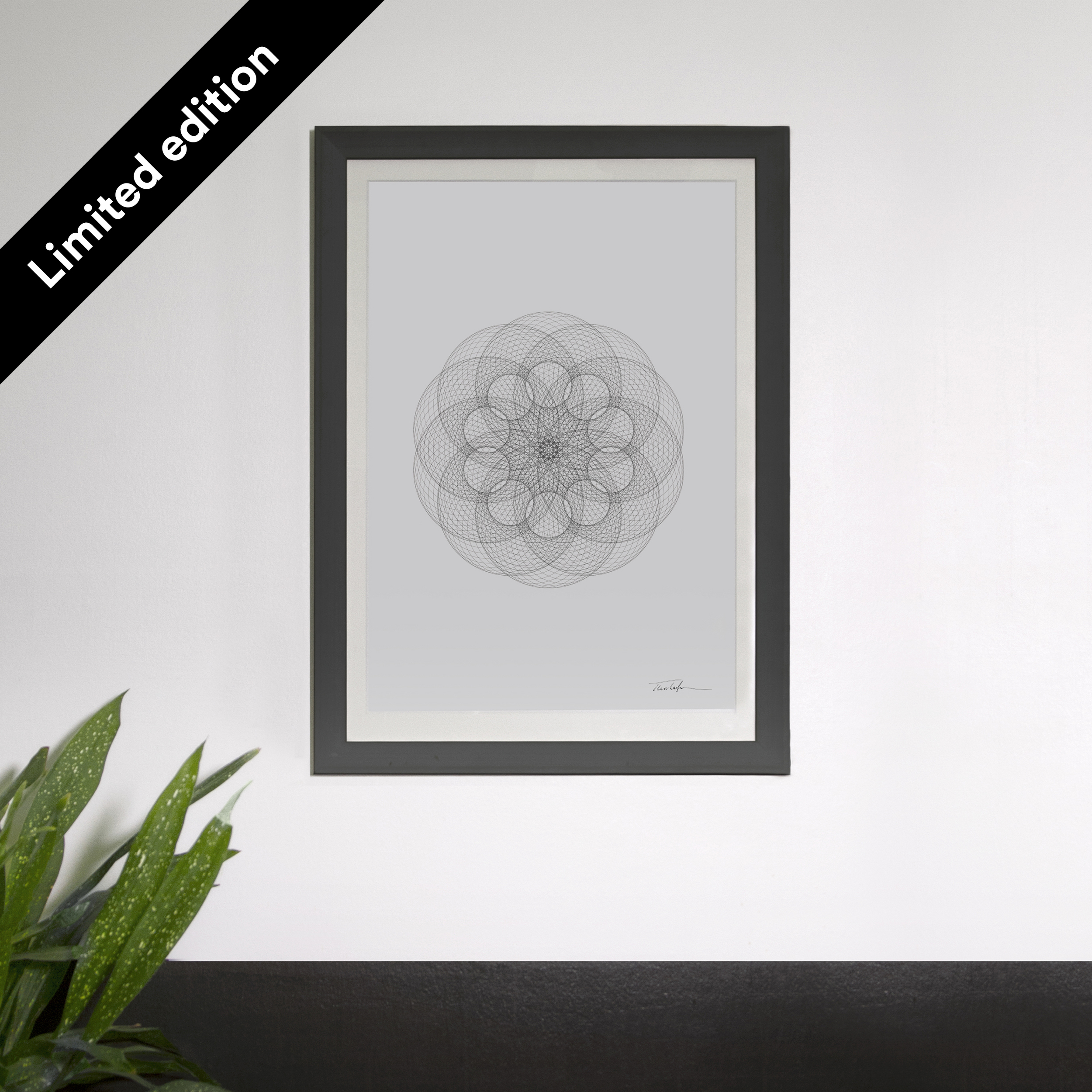 Circles in Circles  Limited Edition Posters