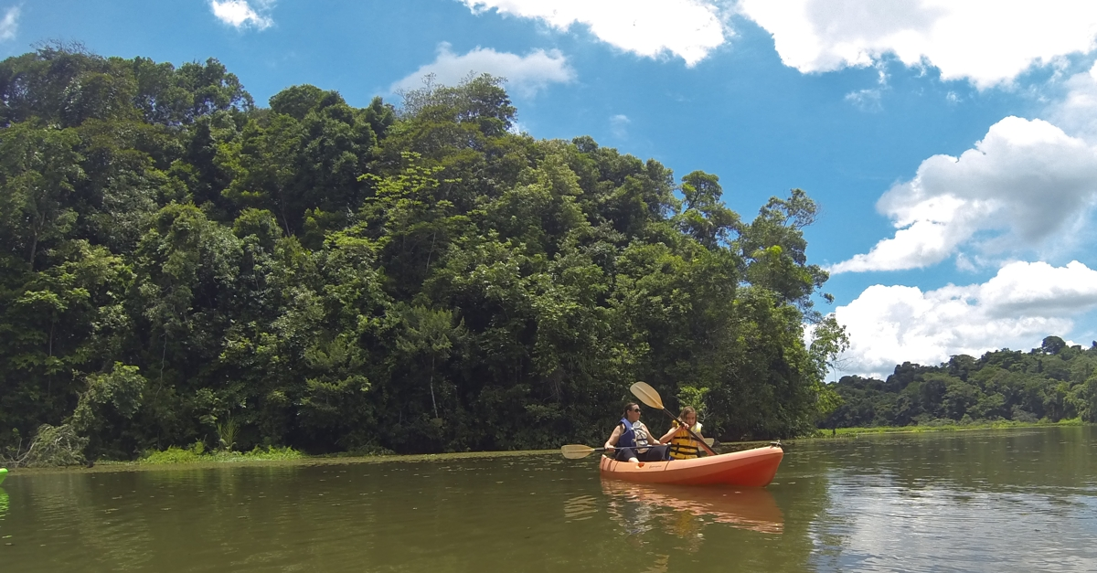 Kayaking into the jungle.