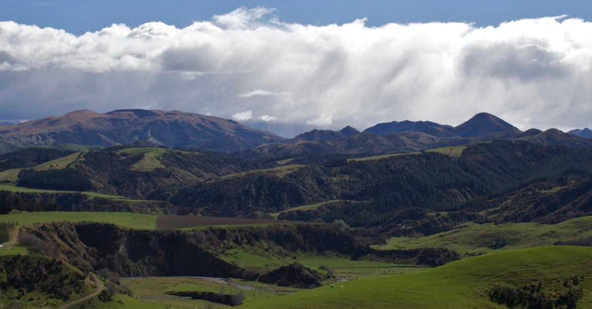 Rolling Hills of New Zealand