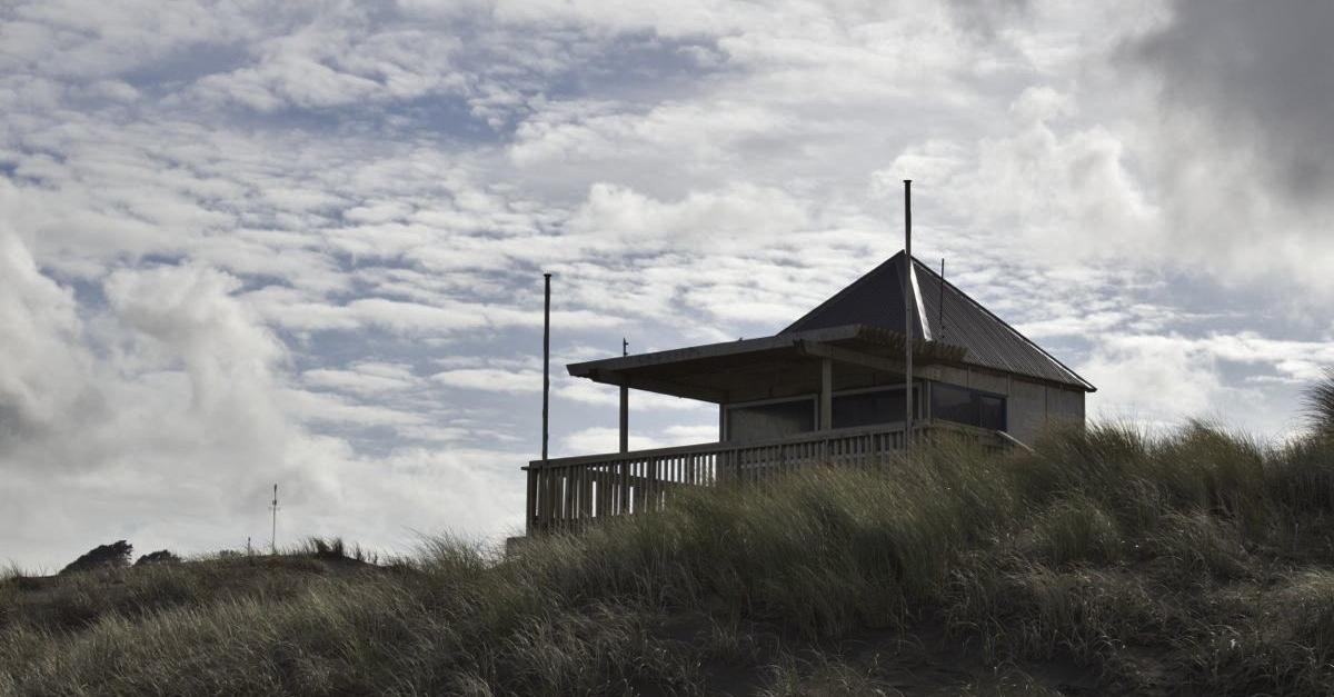 NZ020.jpg