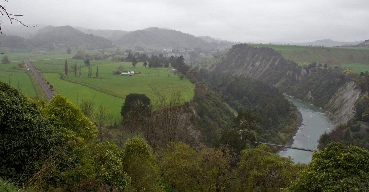 NZ088.jpg