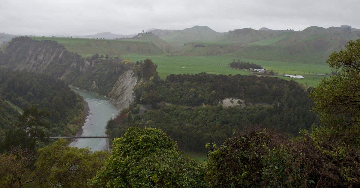 NZ089.jpg