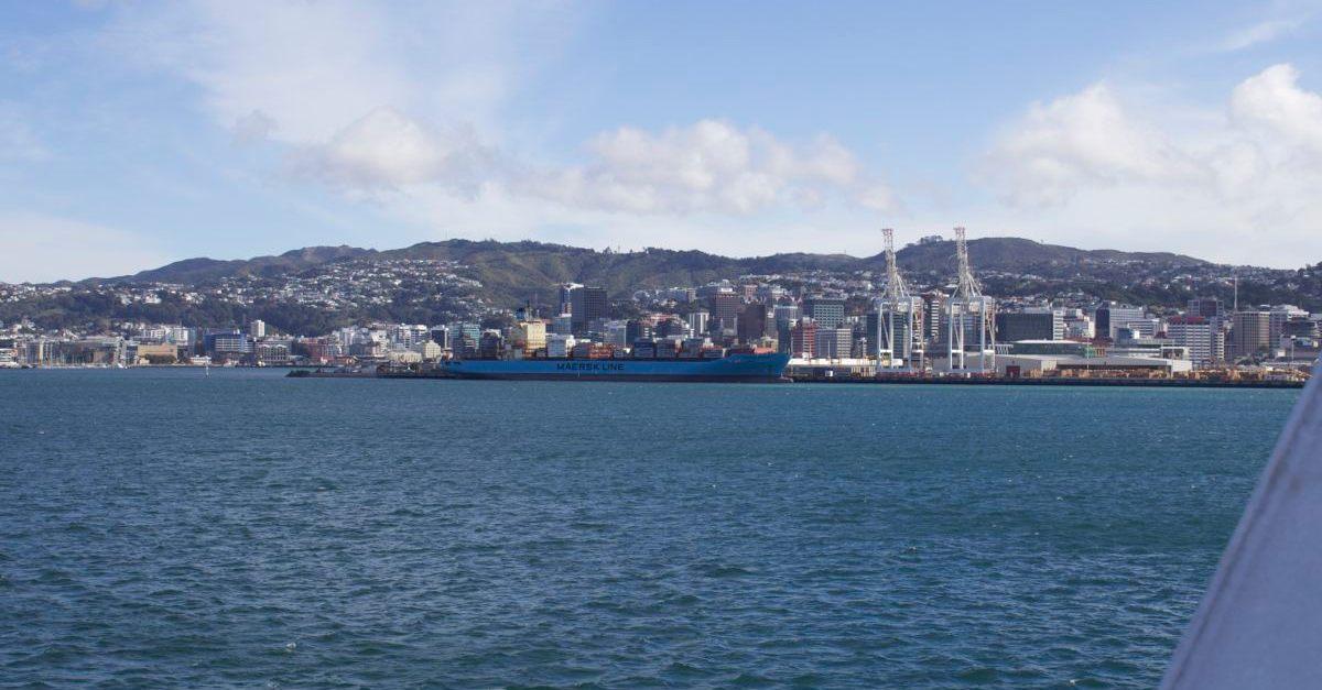 NZ113.jpg