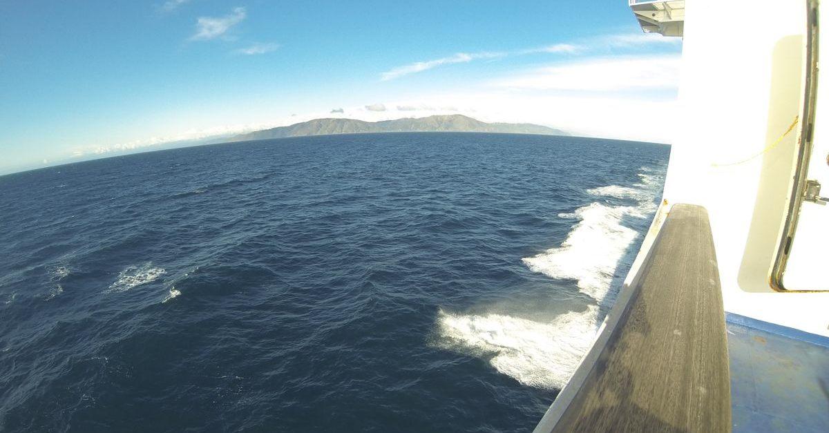 NZ114.jpg