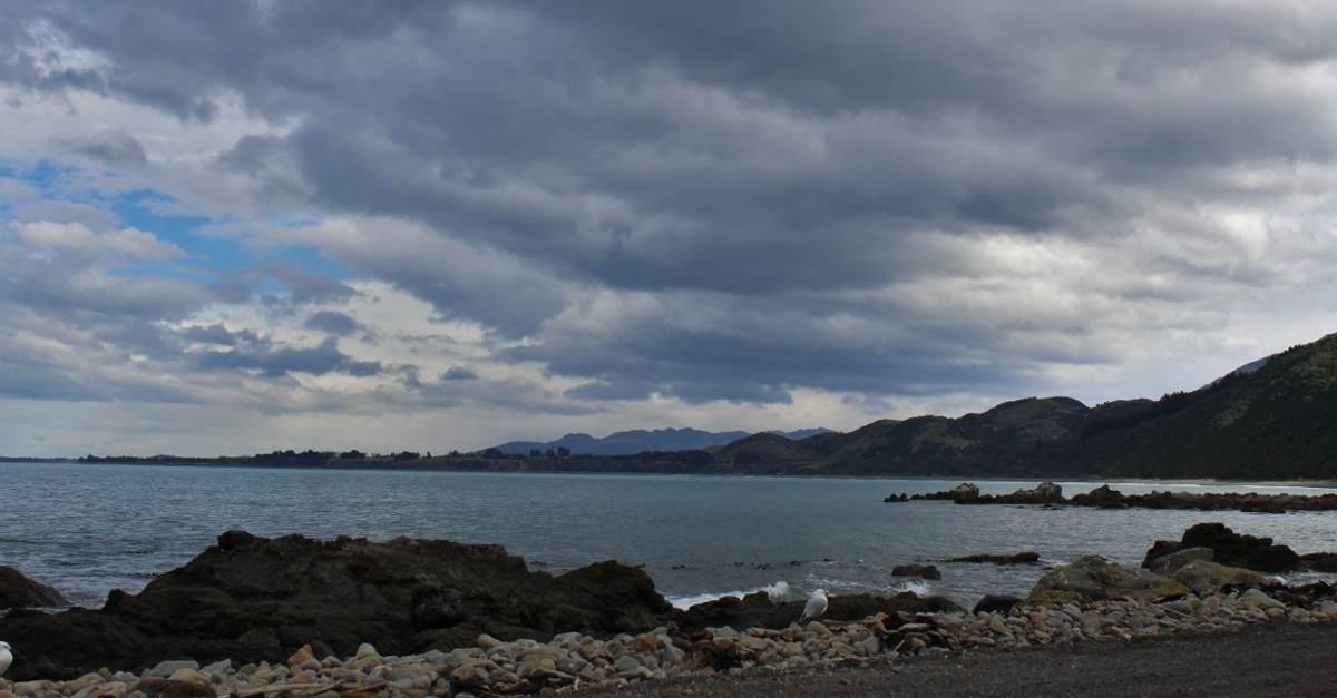 NZ128.jpg