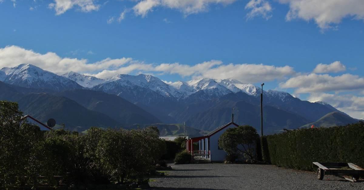 NZ131.jpg