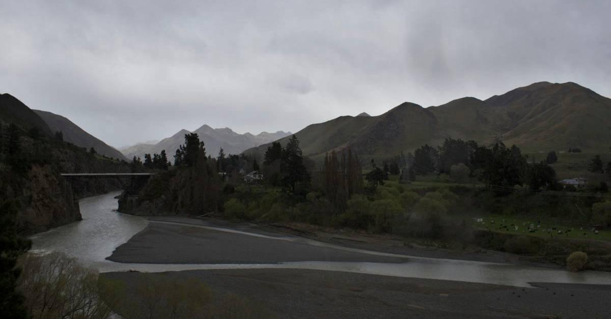 NZ151.jpg