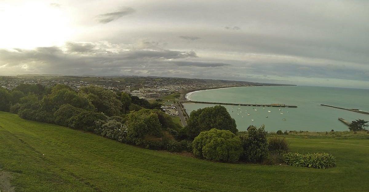 NZ165.jpg