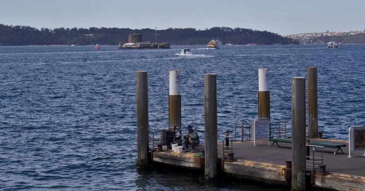 Sydney Harbour Fisherman