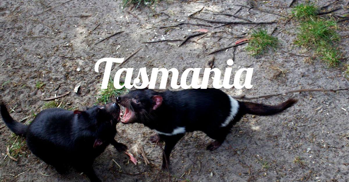 Tasmania-000.jpg