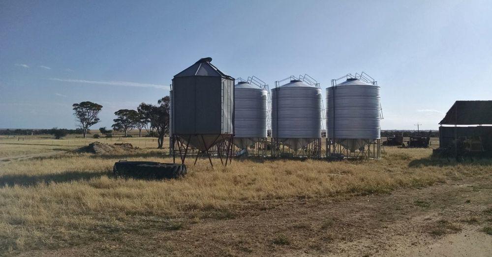 Organic Wheat Storage