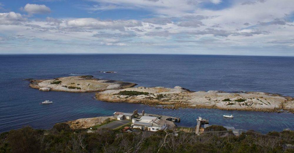 Governor's Island Marine Reserve