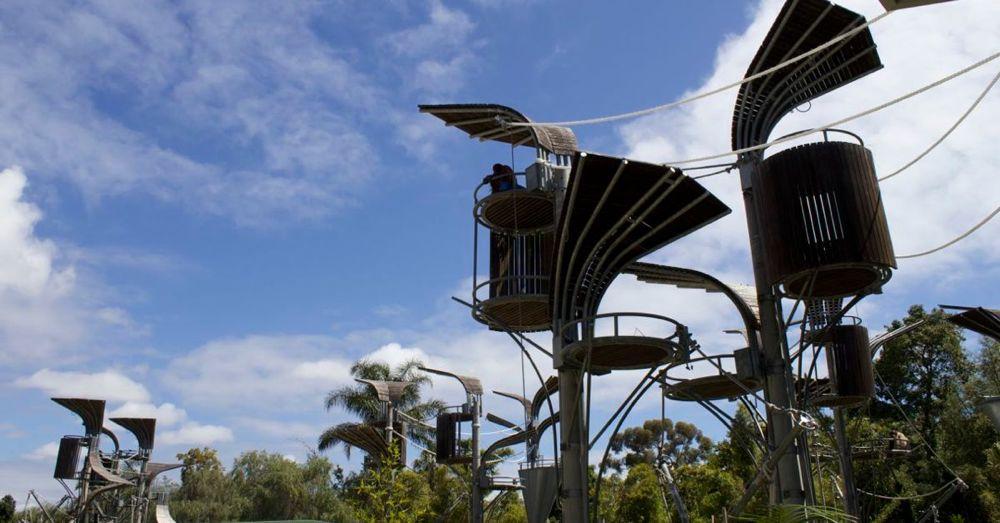 Perth Zoo: Orangutan Enclosure