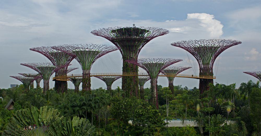 Singapore-25.jpg