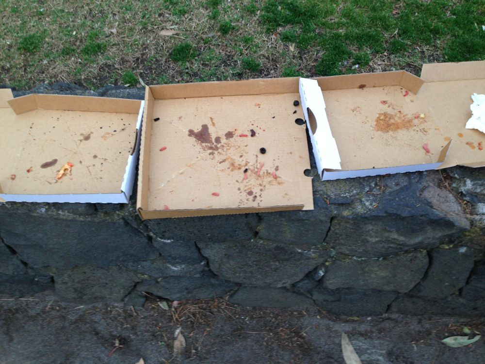 Woodfire pizza (after)