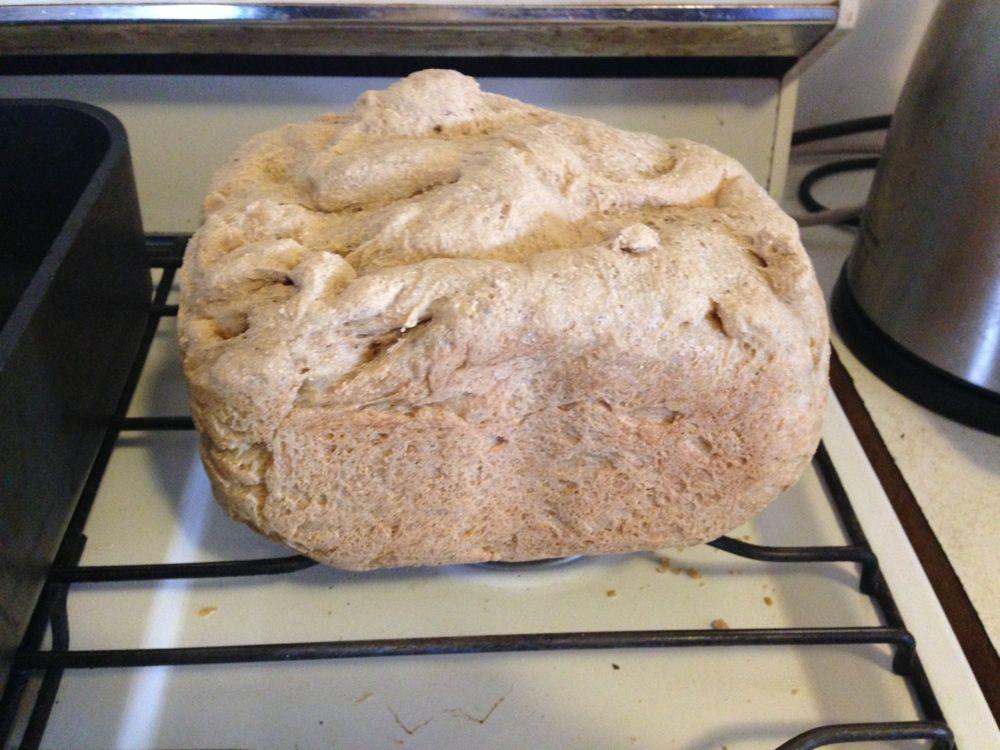 Homemade organic wheat bread