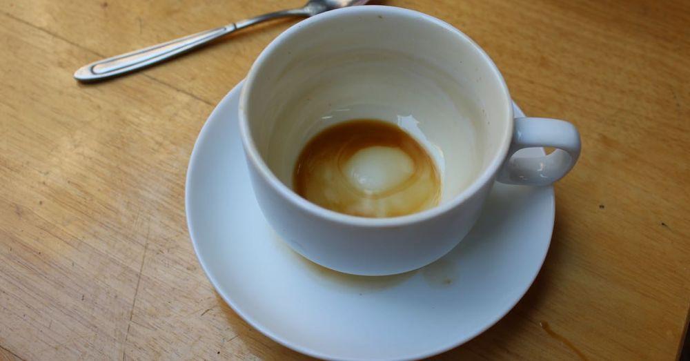 Empty Cup, Café 28