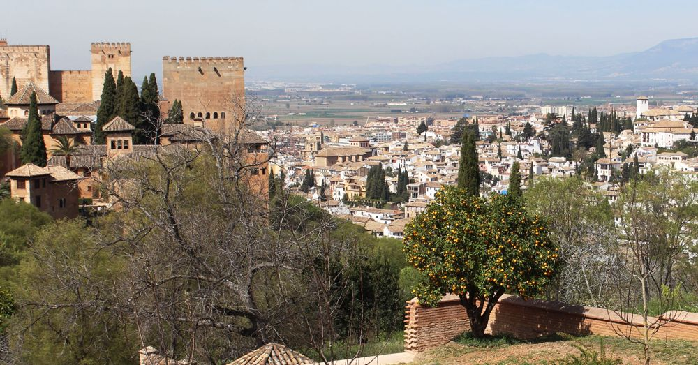 Granada, Orange Tree