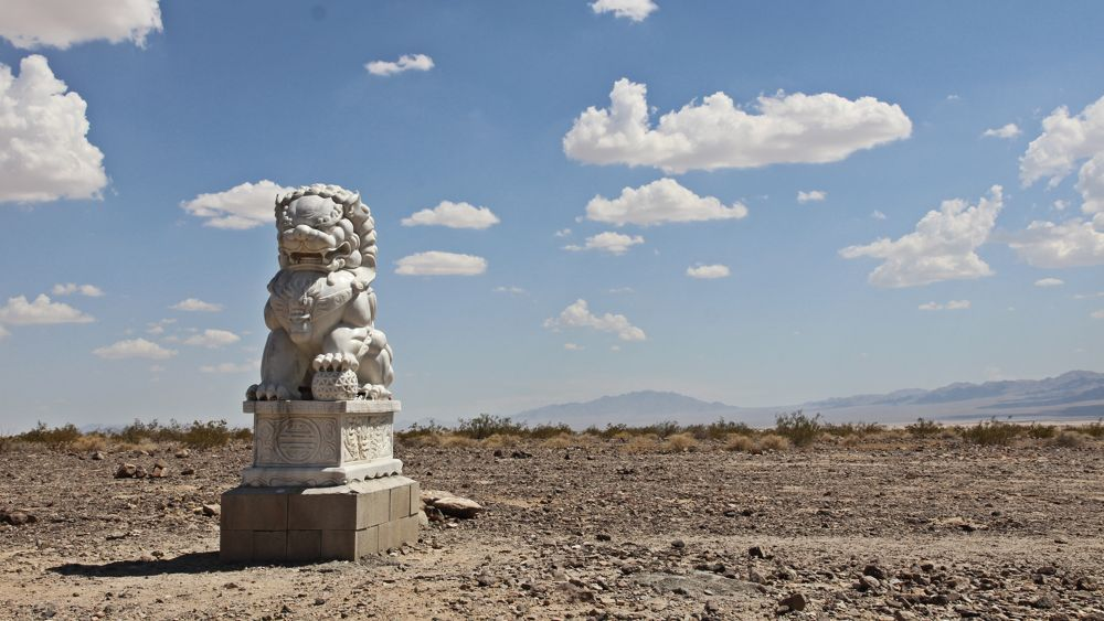 The male guardian lion, keeping watch over the Mojave.