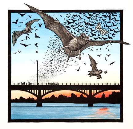 Bats and Congress Avenue Bridge.jpg