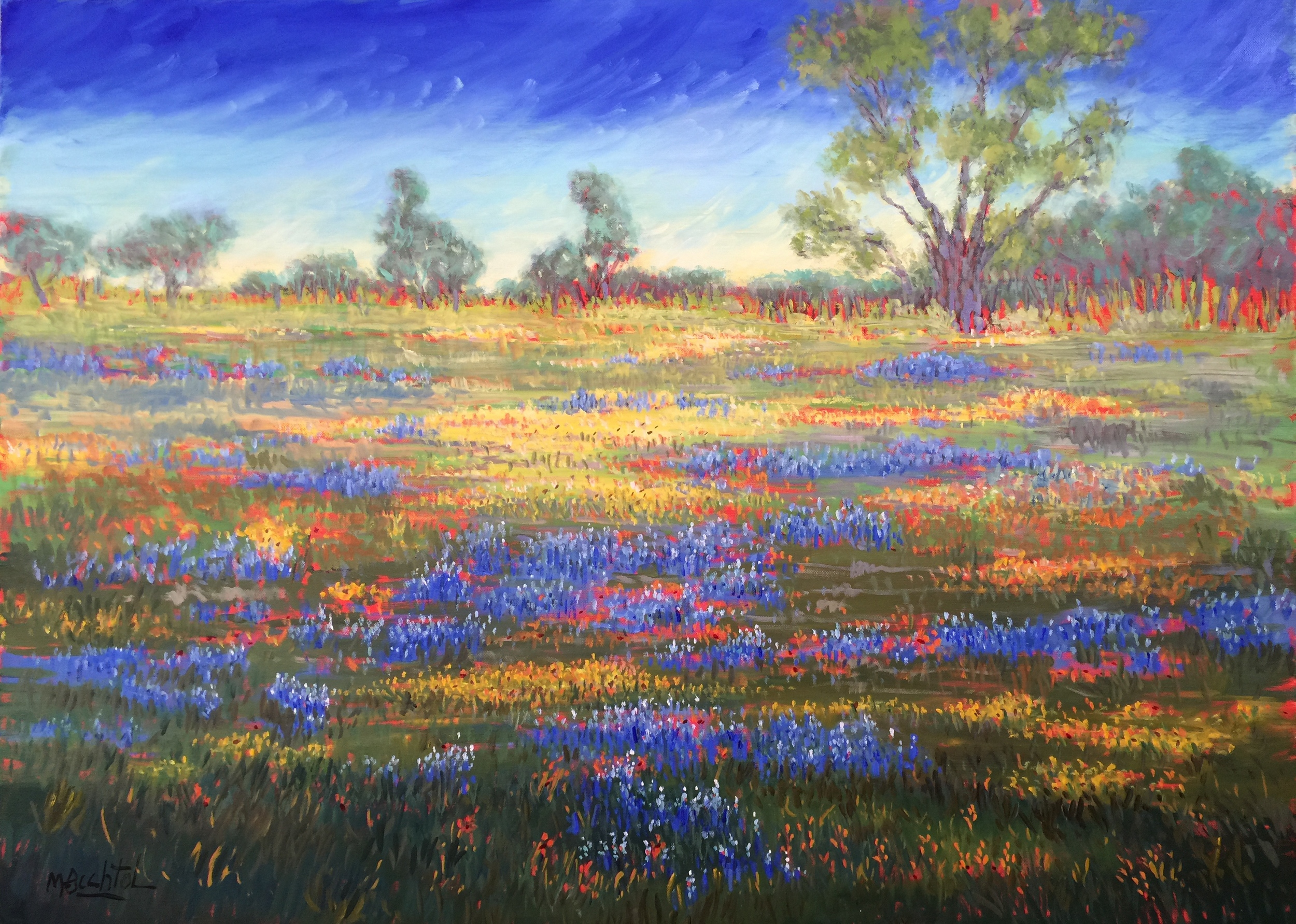 "Bluebonnets by Mary Bechtol 30""x40"""