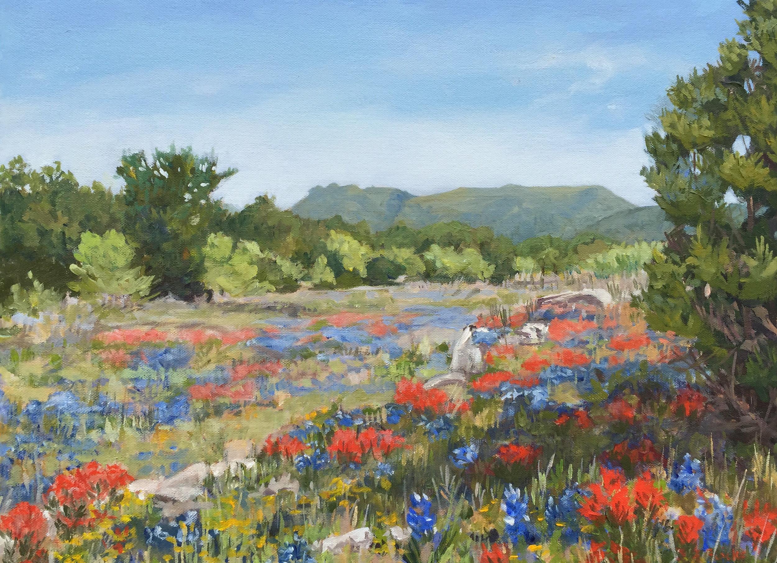Mason County by Lona Flocken   12x16 oil on canvas