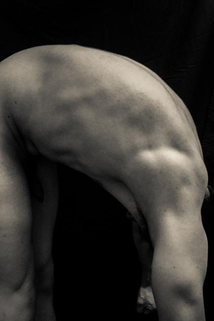 the body returns-559.jpg