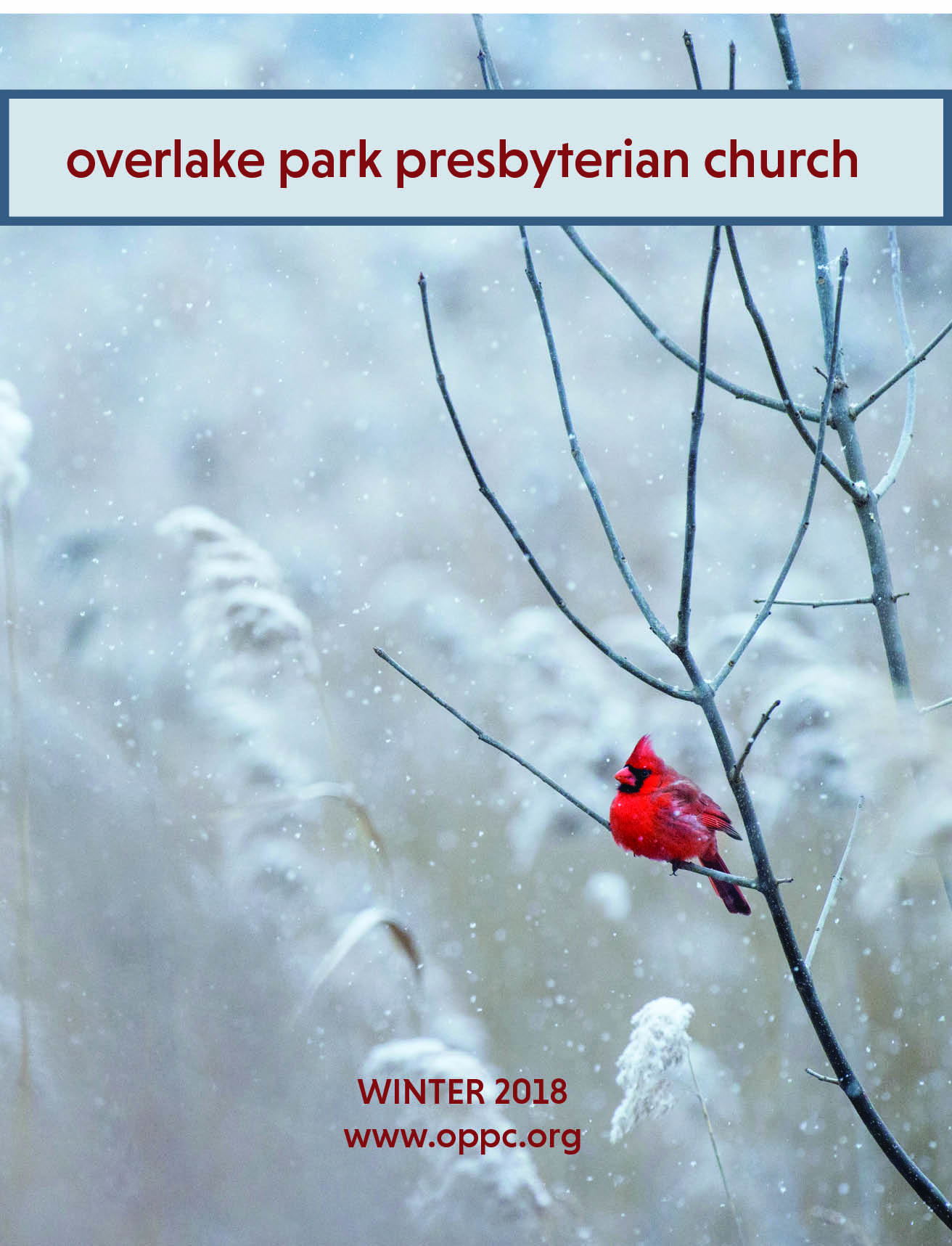 2018 Winter Newsletter_front cover.jpg