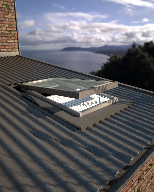 Plus Window on Corugated Roof 2.jpg