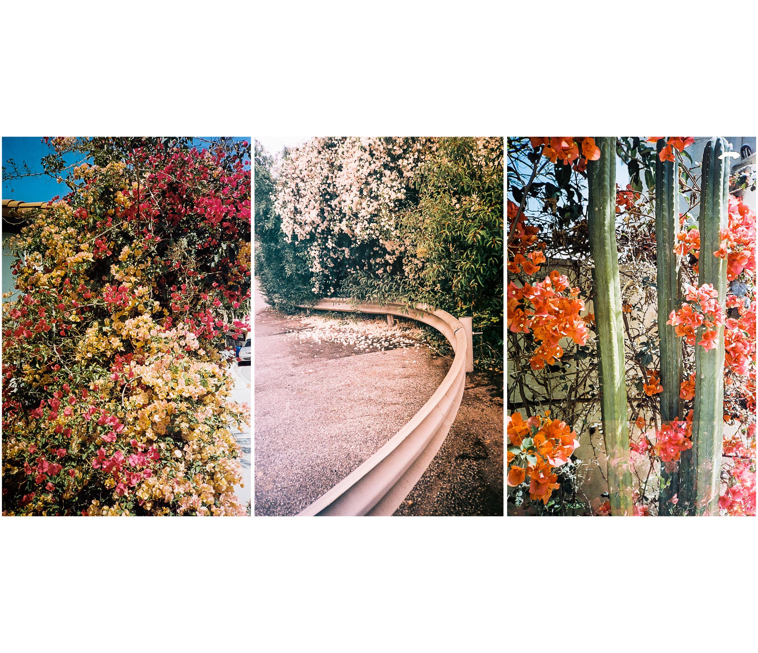 MARCHBOOK_JPEG Page 3.jpg