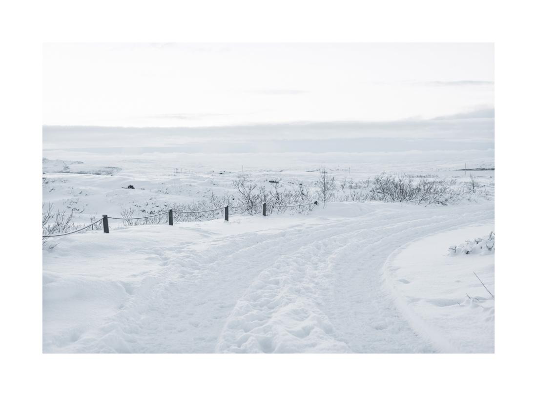 IslandNieve-11x16.jpg